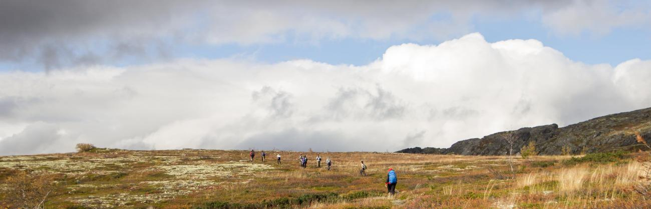 Students roaming mountain tundra (photo by Eremenko E.)